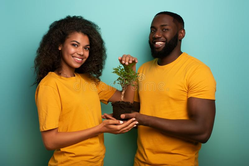 Happy couple protect a small tree. Concept of forestation, ecology and conservation. Happy black couple protect a small tree. Concept of forestation, ecology and stock image