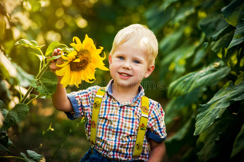 Happy blond boy in a shirt on sunflower field outdoors. Life style, summer time, real emotions royalty free stock photography