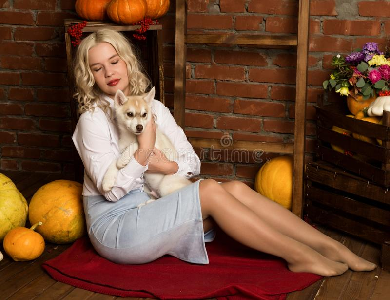 Happy blonde woman with husky puppy on a autumn harvest background royalty free stock image