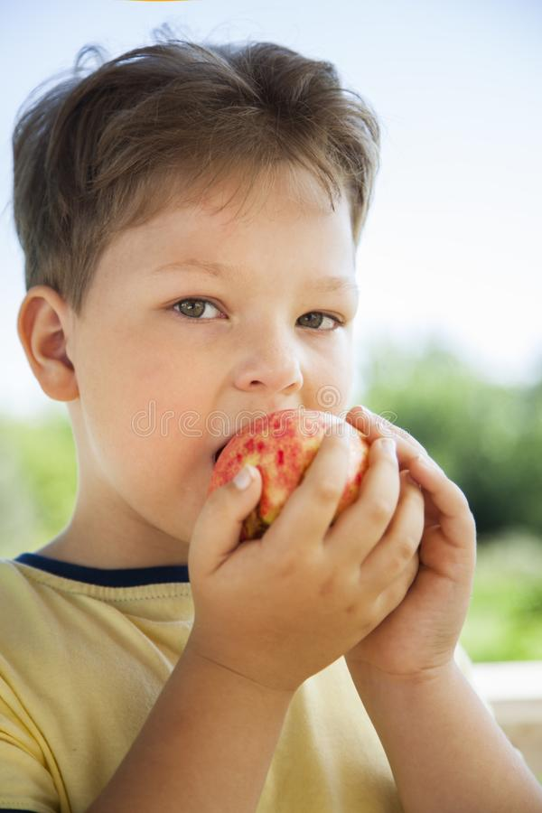 Happy boy biting the apple, A child with a fruit. Kid eating fresh pear royalty free stock images