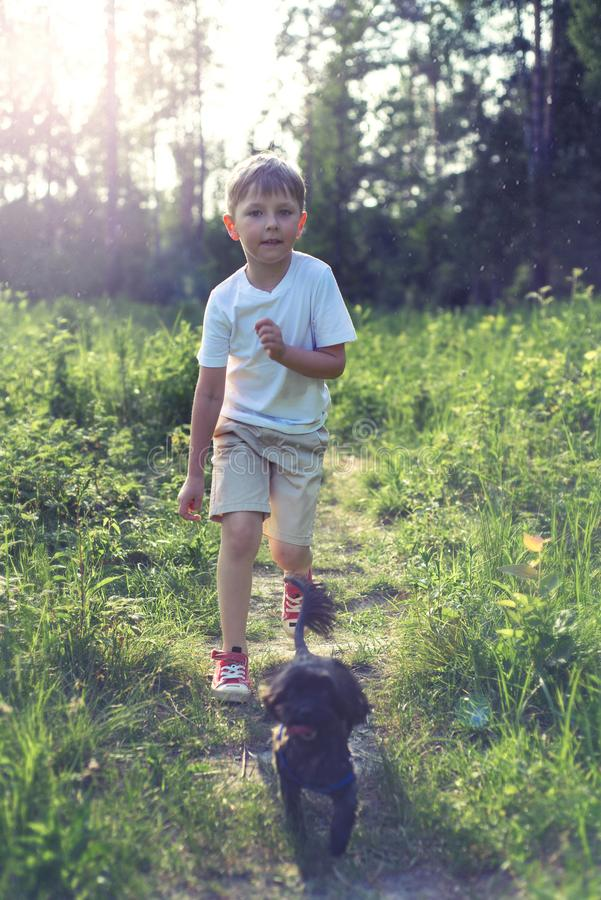 Happy boy and dog together as friends as love of animals concept. Boy seven years walking in the woods with a small dog royalty free stock photo