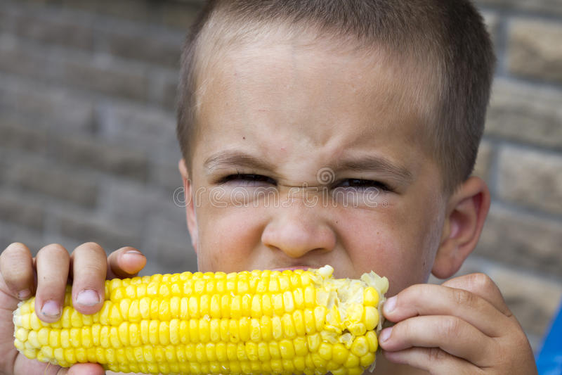 Happy boy eating corn on the cob royalty free stock photos