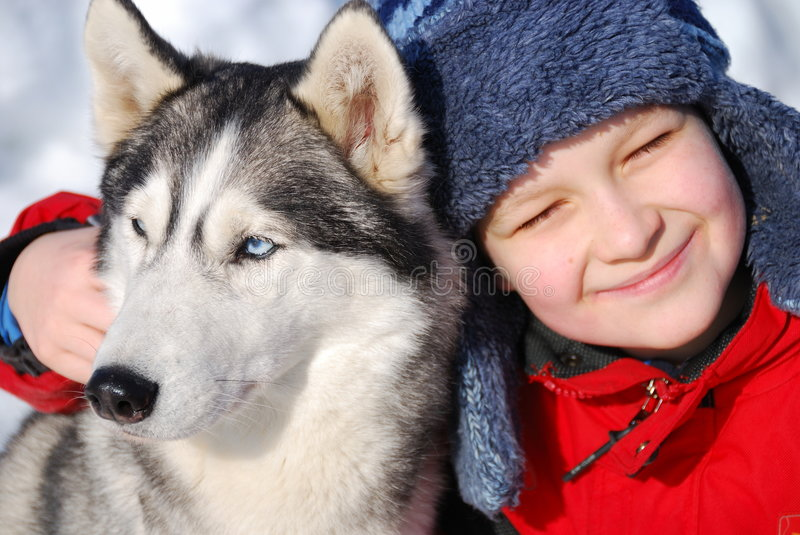 Happy boy with husky dog royalty free stock photography