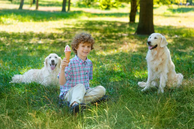 Happy boy with an ice-cream. Ih his hand sits on the ground in the park with spread smile and full of positive emotions. Two dogs sit on the grass in the royalty free stock photography