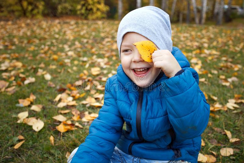 Happy boy playing in the autumn park, funny 4 years old toddler, seasonal walking outdoor, bright color of the weather, sunny day.  royalty free stock photo
