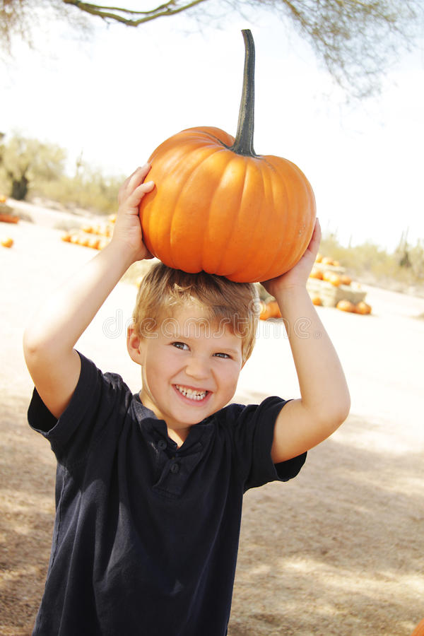 Happy boy at pumpkin patch. A little boy tries to carry a heavy orange pumpkin on his head stock images