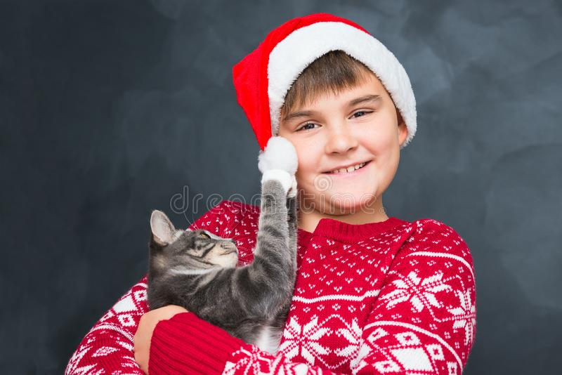 Happy boy in red New Year`s cap with gray kitten in his hands on royalty free stock image