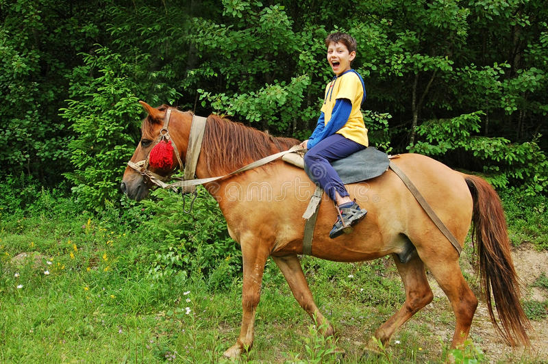 Happy boy riding a horse royalty free stock images