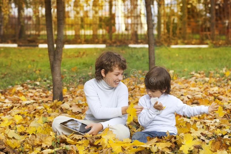 Happy boys in autumn park stock images