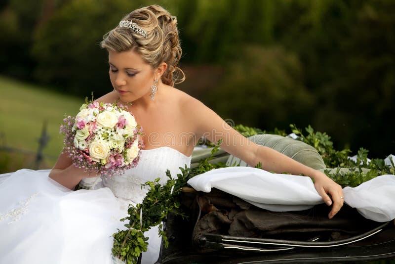 Download Happy bride stock image. Image of beauty, fashion, celebration - 18540075