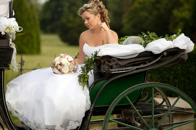 Download Happy bride stock image. Image of beautiful, nature, happiness - 18540165
