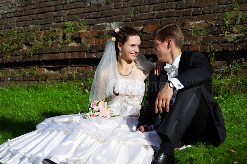 Download Happy Bride And Groom Royalty Free Stock Images - Image: 13231999
