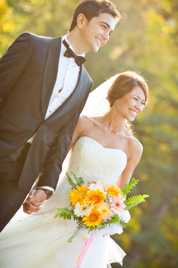 Download Happy Bride And Groom Royalty Free Stock Photos - Image: 17333848