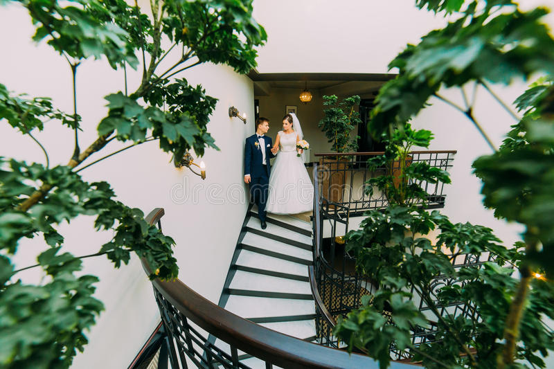 Happy bride and groom going down by the stairs. Green plant leaves on a foreground stock photography