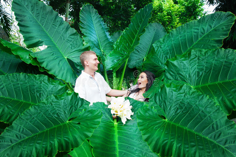 Happy bride and groom having fun on a tropical jungle. Wedding a stock images