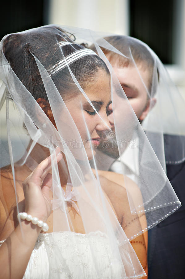 Download Happy Bride And Groom, Wedding Veil Draped Stock Image - Image of style, marriage: 12708507