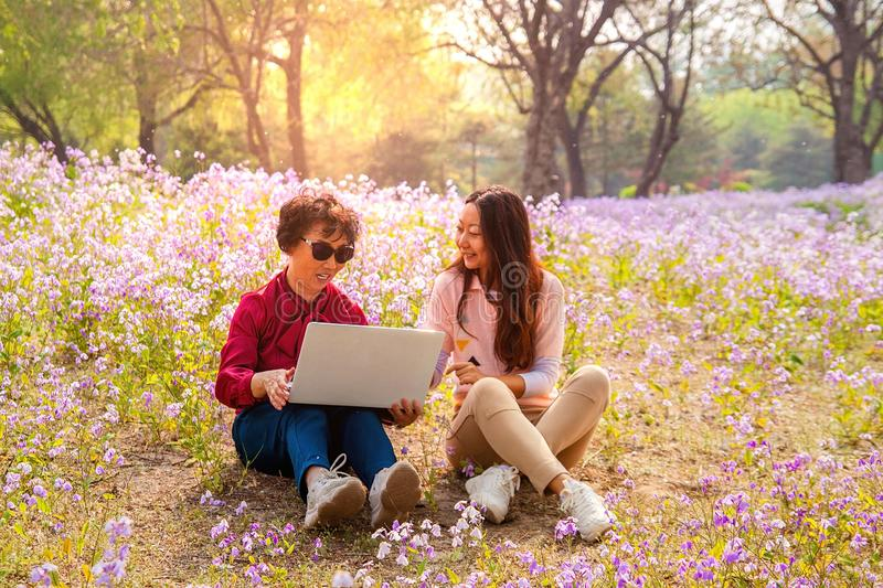 Smiling daughter showing laptop computer to mother while sitting in a park. stock images
