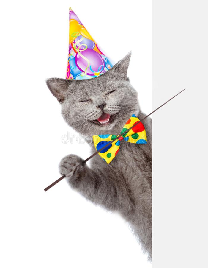 Happy cat in birthday hat holding a pointing stick and points on empty banner. isolated on white background.  royalty free stock photo