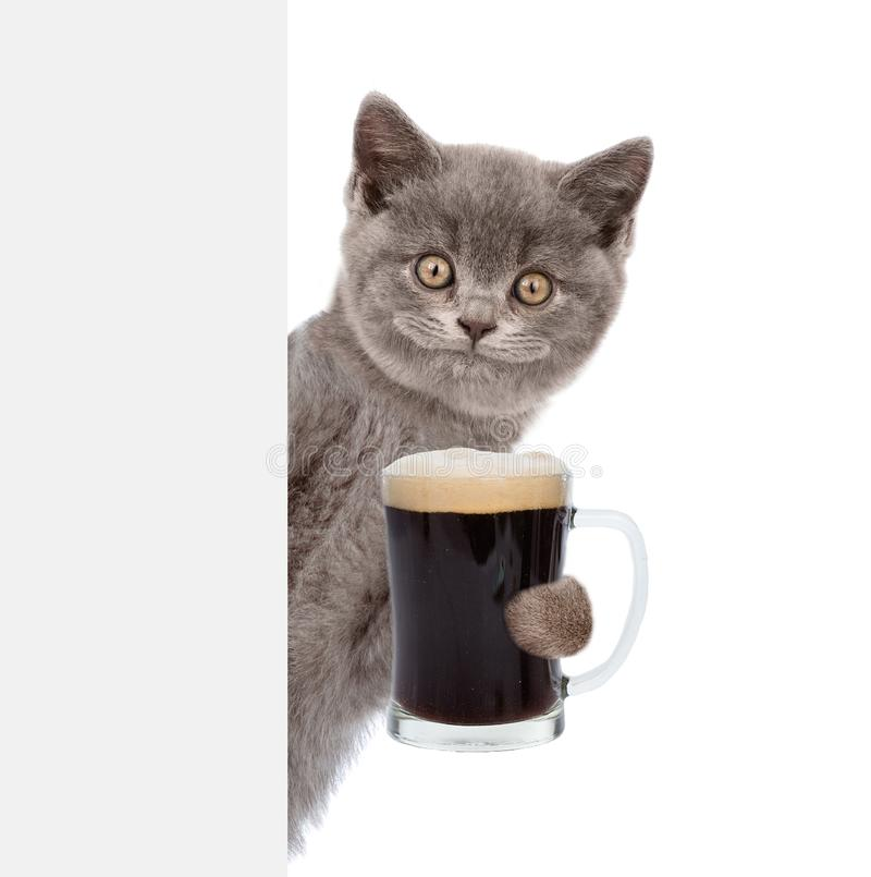 Happy cat holding beer peeking from behind empty board. isolated on white background.  stock photo