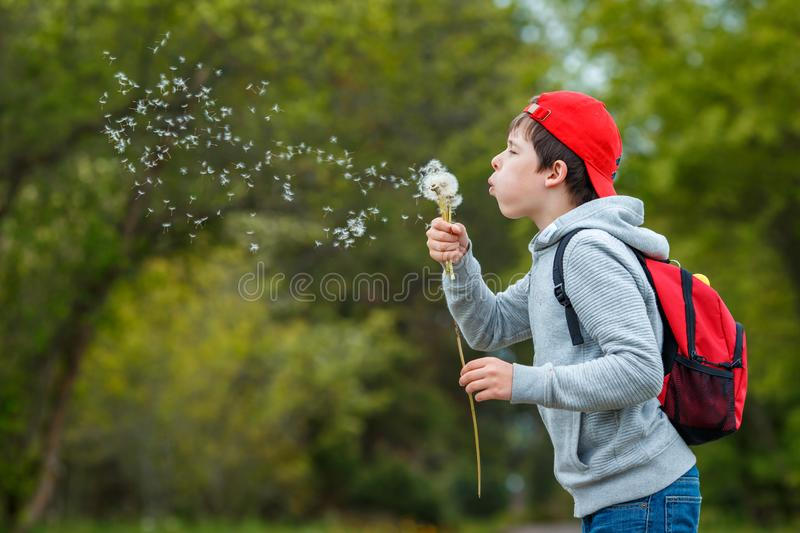 Happy child blowing dandelion flower outdoors. Boy having fun in spring park. Blurred green background. Dream and imagination concept stock image