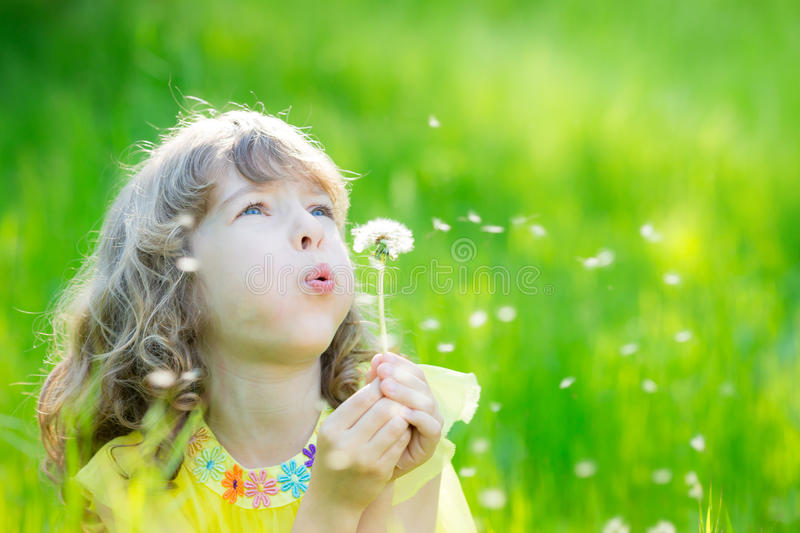Happy child blowing dandelion flower outdoors royalty free stock image