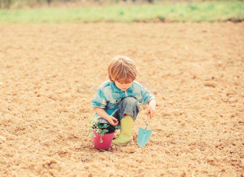 Happy child gardener. spring country side village. earth day. soils and fertilizers. summer farm. small kid planting a royalty free stock photo