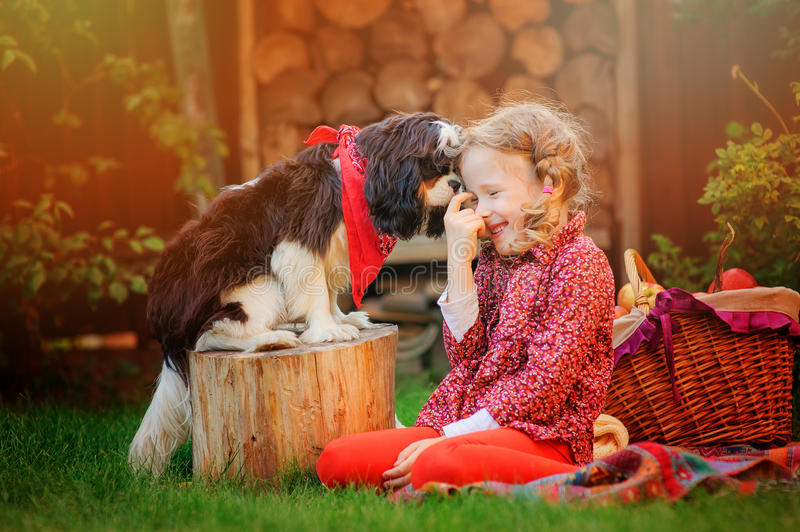 Happy child girl having fun playing with her dog in sunny autumn garden stock photo
