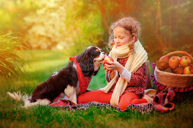 Download Happy Child Girl Playing With Her Dog And Giving Him Apple In Sunny Autumn Garden Stock Photo - Image of female, little: 57239562