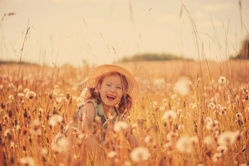 Happy child girl walking on summer meadow with dangelions. Rural country style scene, outdoor activities. Cozy lifestyle royalty free stock images