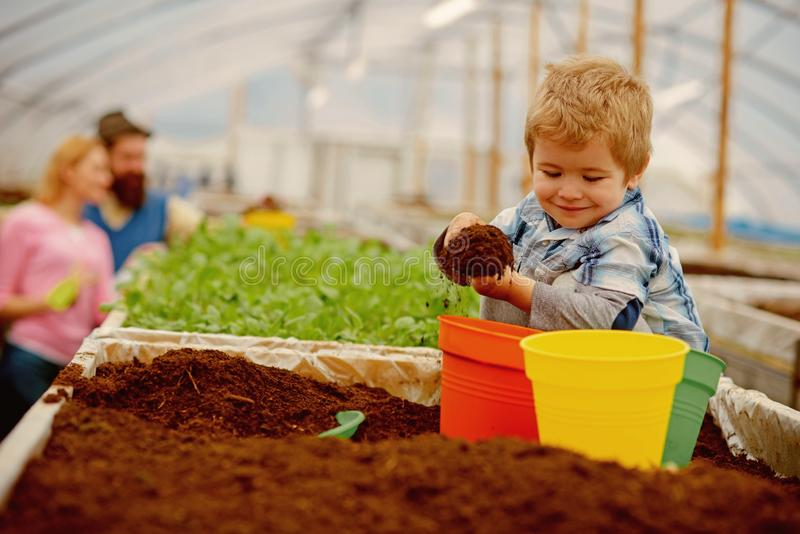 Happy child. happy child workign with soil in garden. happy child in greenhouse. happy child with family in farm royalty free stock image