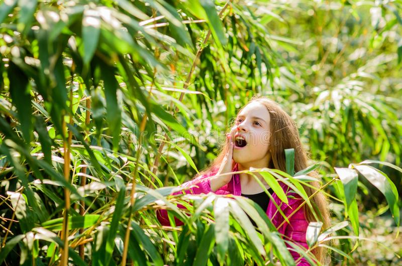 Happy child in park. surprised kid in jungle. traveling concept. summer nature. Natural beauty. Childhood happiness royalty free stock photos