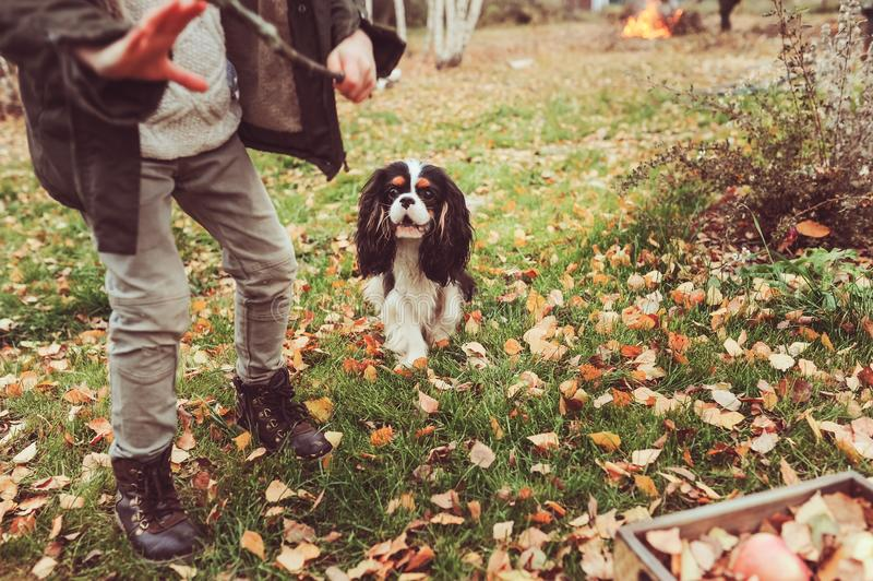 Happy child playing with dog in autumn. Seasonal outdoor activities with kids. Lifestyle capture on the walk royalty free stock photos