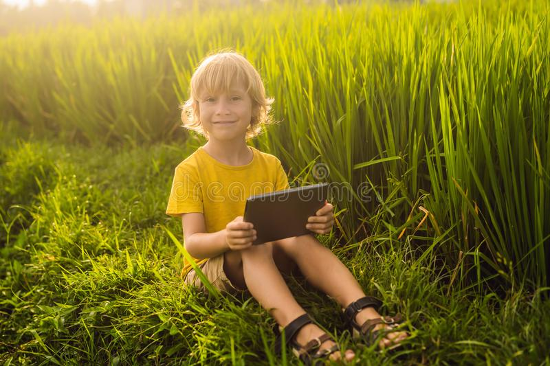 Happy child sitting on the field holding tablet. Boy sitting on the grass on sunny day. Home schooling or playing a. Tablet royalty free stock photo