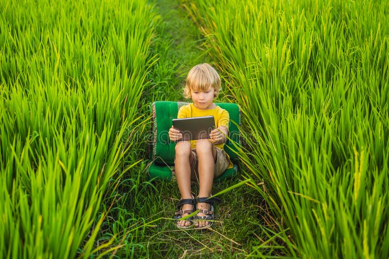 Happy child sitting on the field holding tablet. Boy sitting on the grass on sunny day. Home schooling or playing a. Tablet stock photography