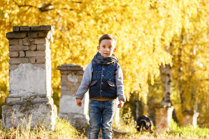 Happy child walks in the park. Bright autumn day. Trees with yellow foliage. Warm october stock photo