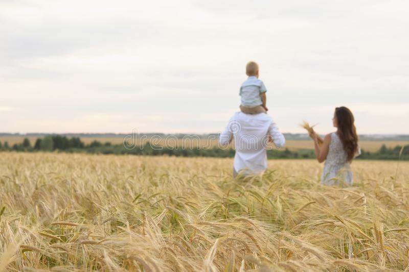 Happy childhood, family walking on the wheat field stock photo
