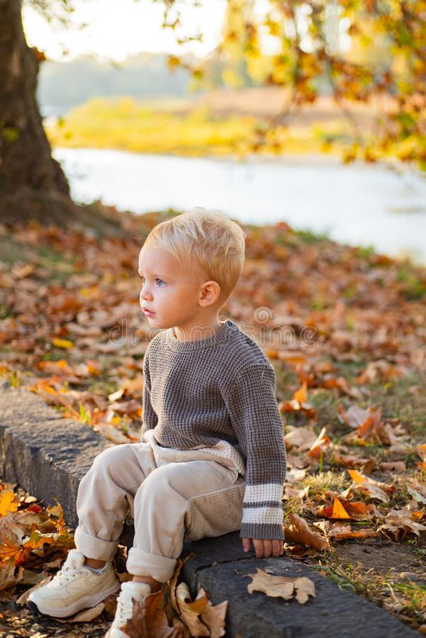 Happy childhood. Childhood memories. Child autumn leaves background. Warm moments of autumn. Toddler boy blue eyes enjoy. Autumn. Small stylish baby toddler on stock photo