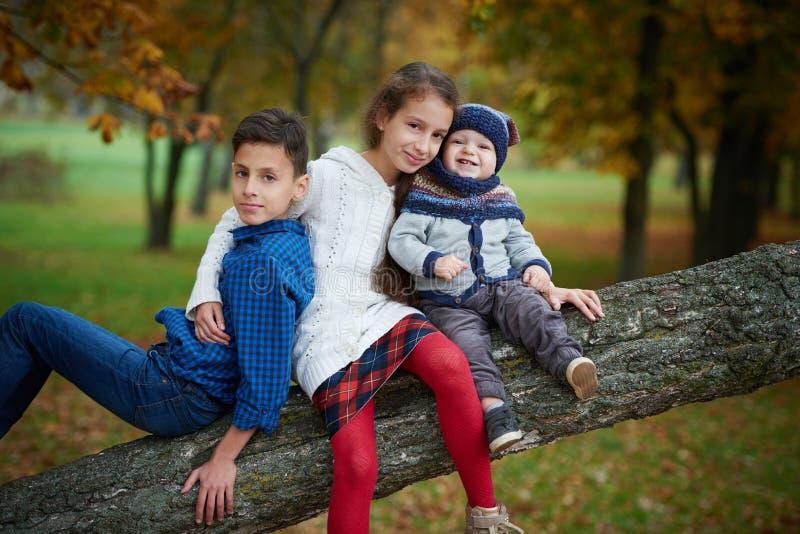 Happy children in autumn park stock photos
