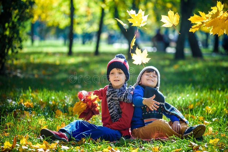 Happy children playing in beautiful autumn park on warm sunny fall day. Kids play with golden maple leaves stock photos