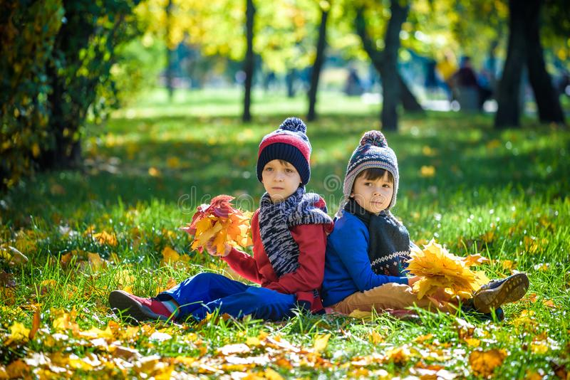 Happy children playing in beautiful autumn park on warm sunny fall day. Kids play with golden maple leaves stock images