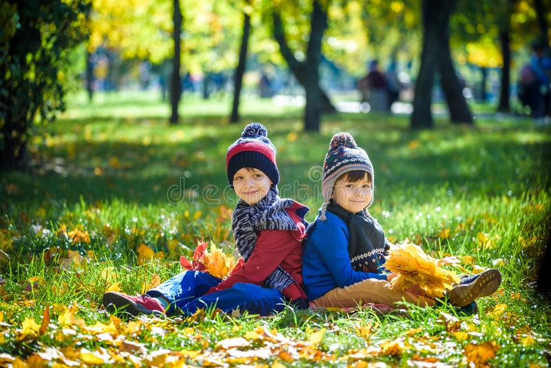 Happy children playing in beautiful autumn park on warm sunny fall day. Kids play with golden maple leaves royalty free stock photos
