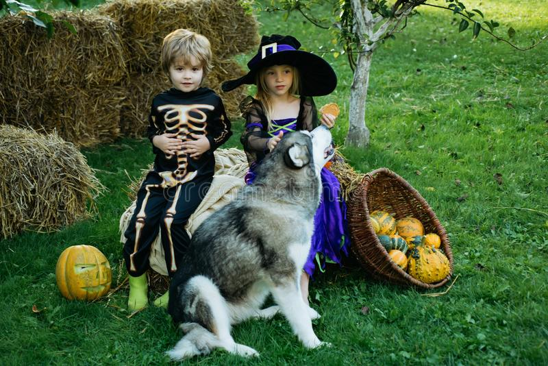 Happy children with skeleton and witch costume holding and eating candies. Happy Halloween Cute children daughter and stock image