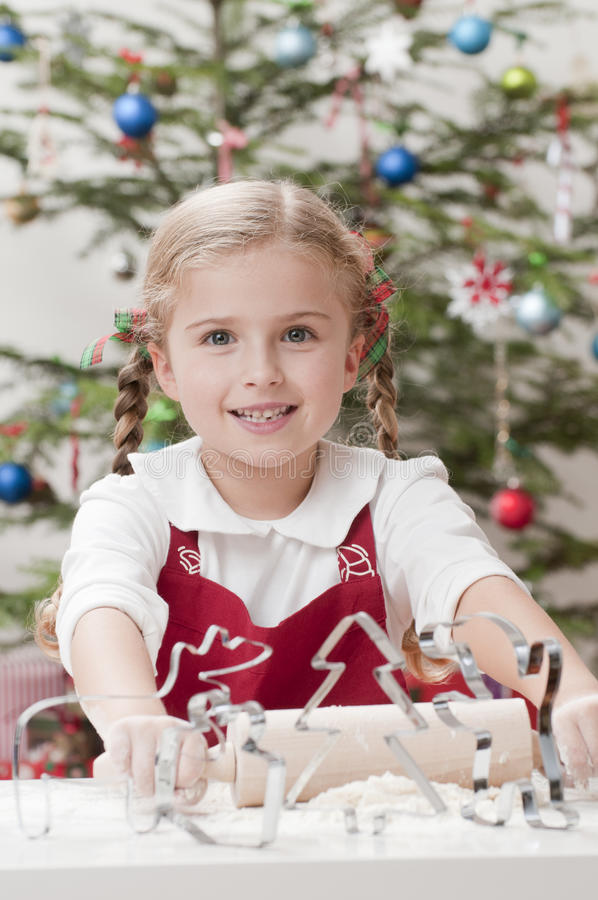 Download Happy Christmas stock photo. Image of holiday, female - 16816784