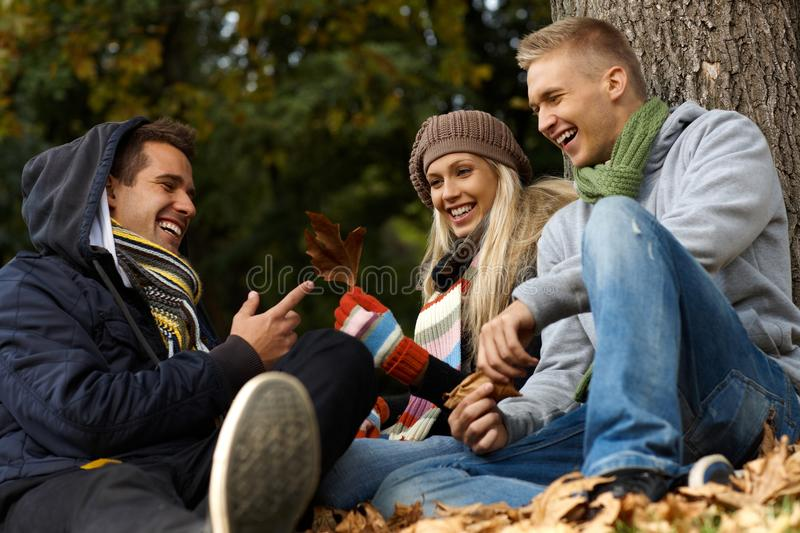 Happy Companionship In Autumn Park Stock Image