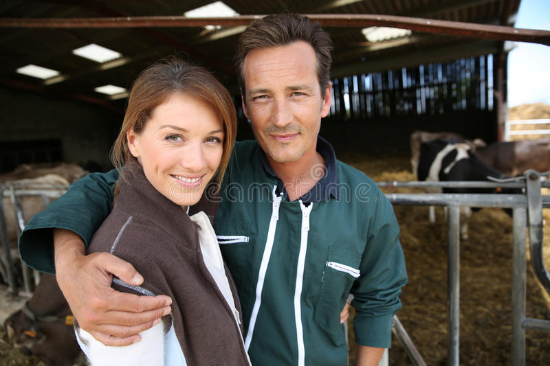 Happy couple of breeders in barn. Cheerful couple of breeders standing in barn royalty free stock photo