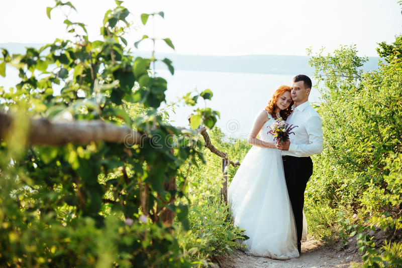 Happy couple bride on a summer day outdoors.  royalty free stock photography