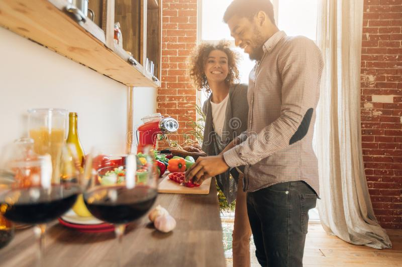 Happy couple cooking together. stock images