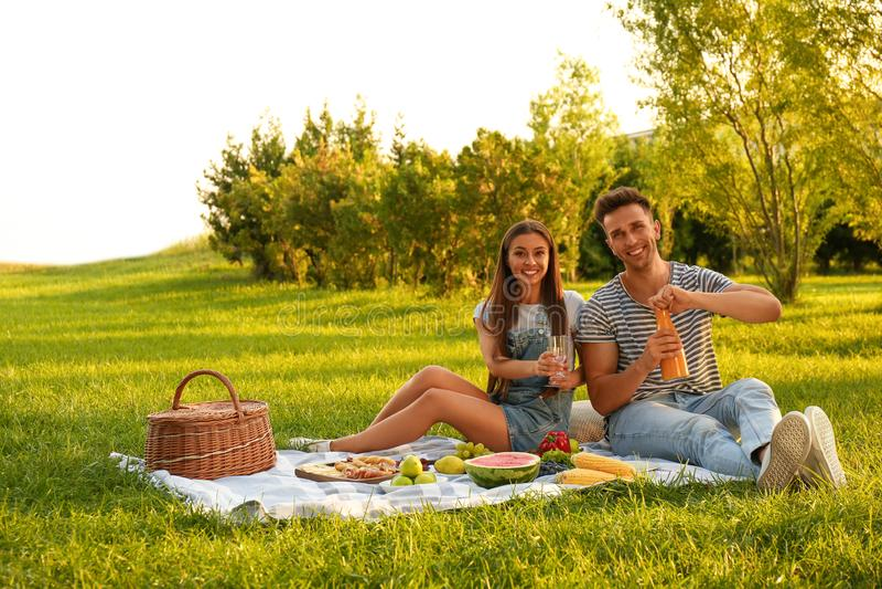 Happy couple having picnic on sunny day stock photography