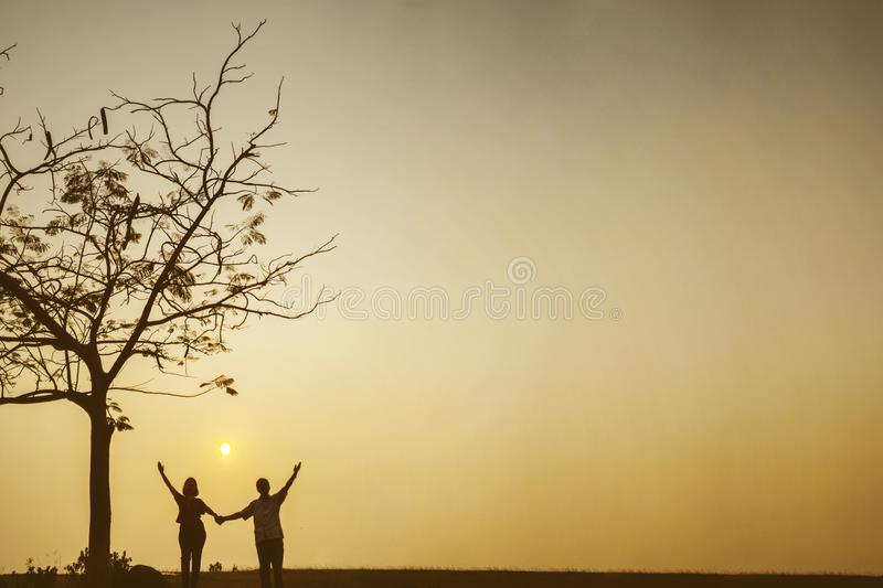 Happy couple holding hands together near a tree royalty free stock images