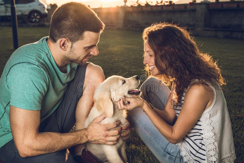 Happy couple with puppy dog in the country. Puppy breed Golden Retriever.Couple in a sunset with puppy dog royalty free stock photos